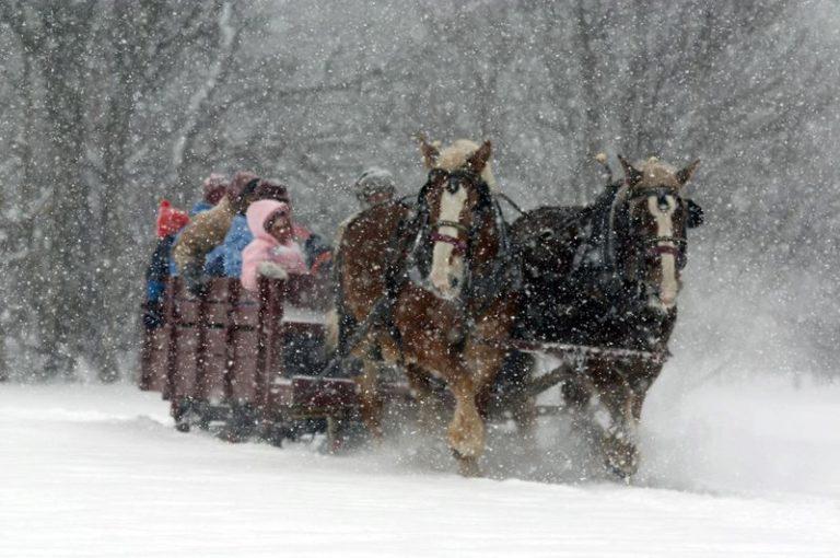 Maine Sleigh Ride